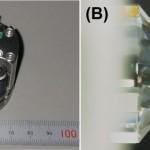 水素を閉じ込めるダイヤモンドアンビル型高圧装置